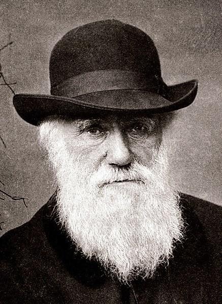 Darwin, imagen