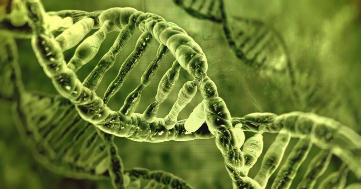 Resultado de imagen para biologia