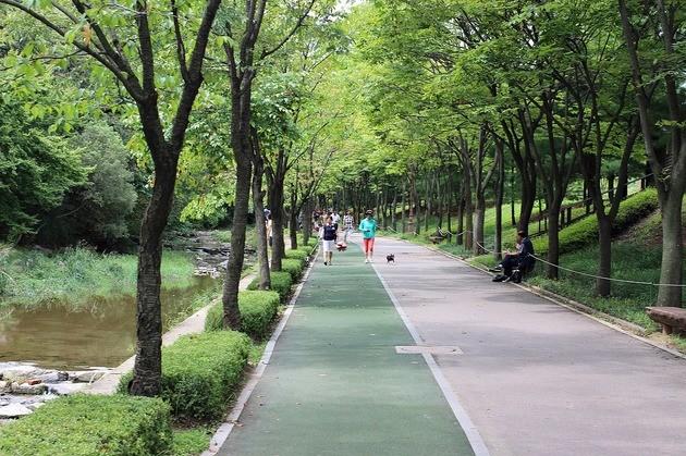 Ambientes naturales ejercicio