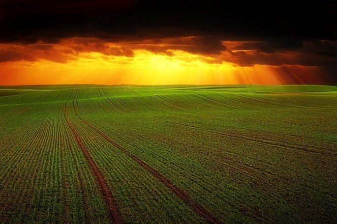 economía agricola ciencias sociales