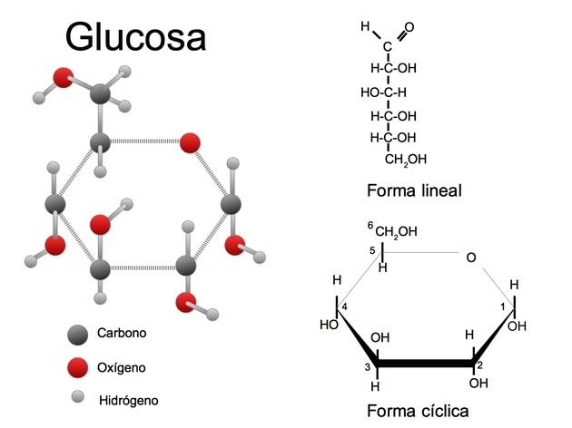 Resultado de imagen para glucosa formula quimica