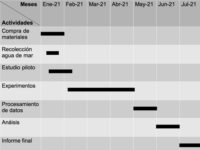 cronograma de un proyecto de investigacion