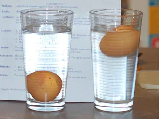 Diferenciar huevos frscos de viejos