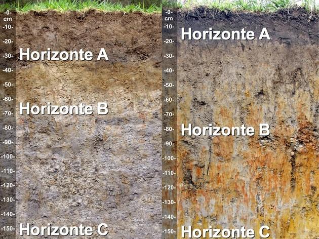 Resultado de imagen para horizontes del suelo molisol