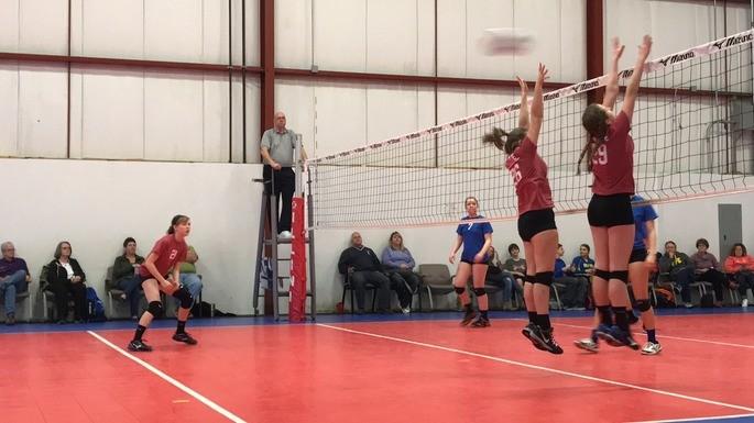 voleibol.árbitro